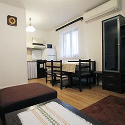 living room apartments vesna